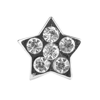 Hundehalsband Anhänger Stern