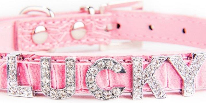 hundehalsband-mit-namen-beispiel-pink