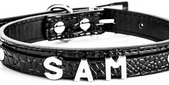 hundehalsband-mit-namen-beispiel-schwarz